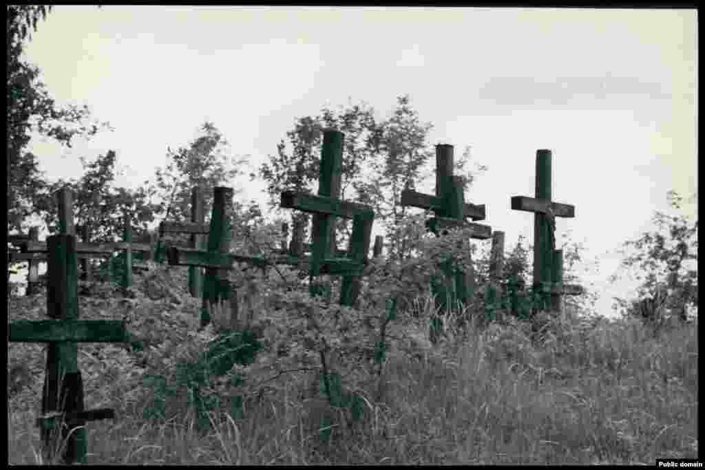 Сельское кладбище в деревне Цмень Столинского района Брестской области.