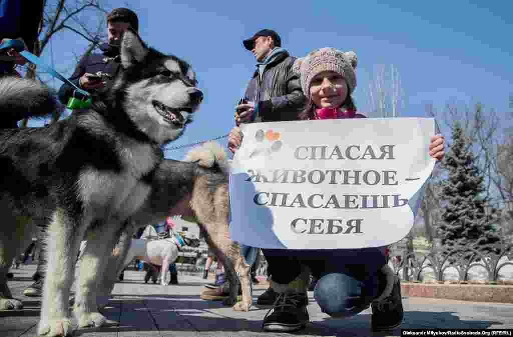Участники шествия уверены: если быть равнодушными, бездомных животных станет еще больше