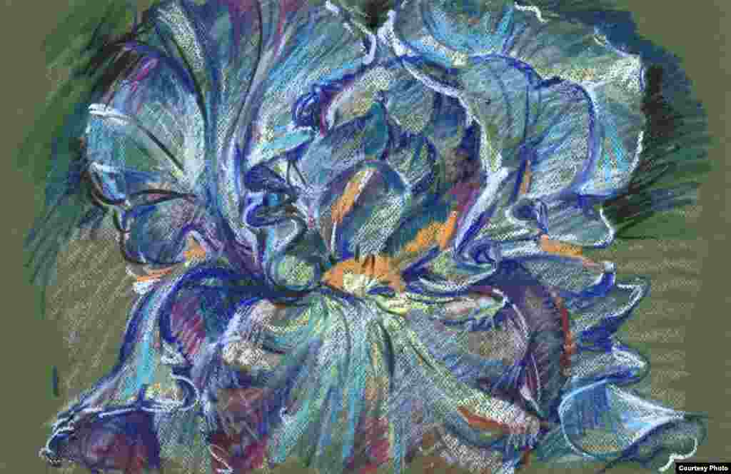 Цвета ириса