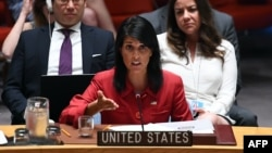 U.S. Ambassador to the United Nations Nikki Haley speaks during a Security Council meeting at UN headquarters in New York last month.