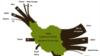 گزارش آژانس انرژی از وضعیت بازگشت نفت ایران به بازار اروپا