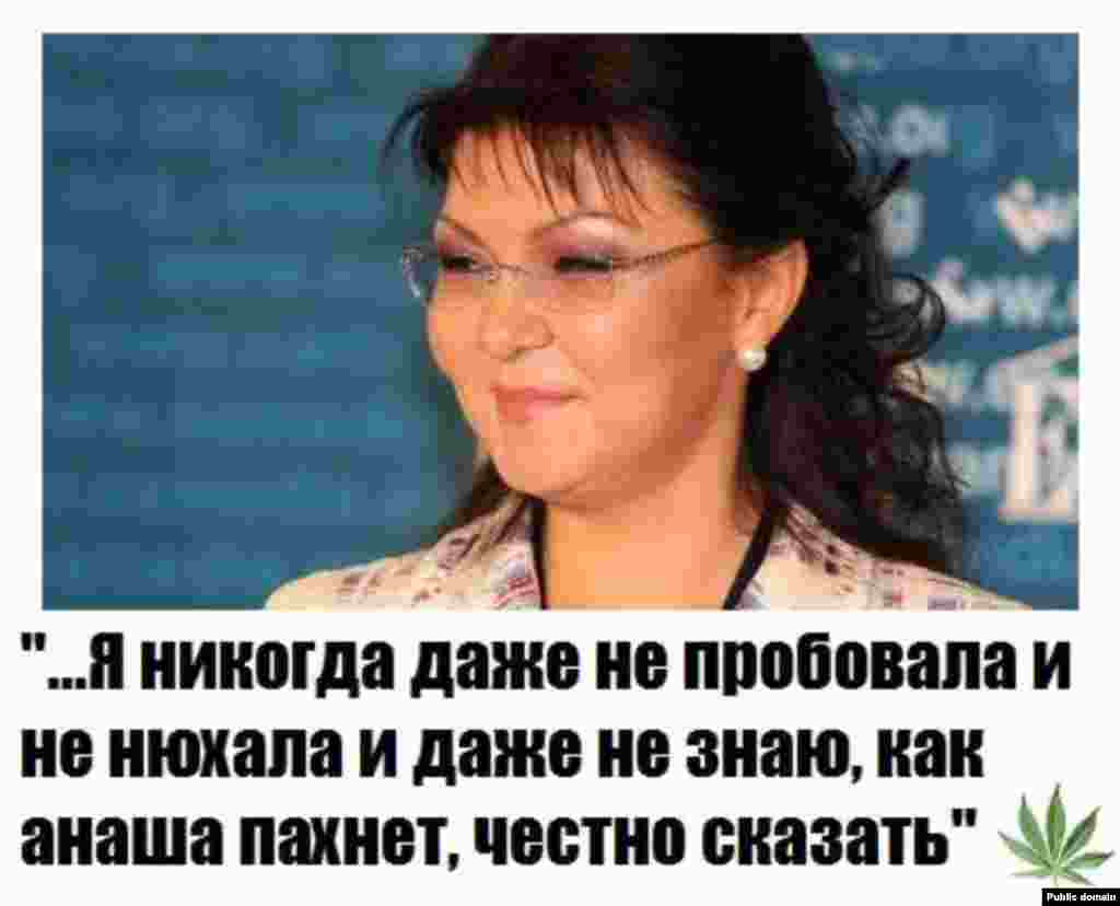 13 января дочь президента Казахстана, депутат мажилиса парламента Дарига Назарбаева во время правительственного часа предложила передать плантации дикорастущей конопли в Шуйской долине крупным фармацевтическим компаниям. Она призвала открыть заводы по переработке конопли, которые могли бы дать новые рабочие места и налоги в бюджет. Ее слова о том, что «она даже не нюхала» наркотики, стали поводом для шуток, в Сети после ее высказывания появились различные демотиваторы.