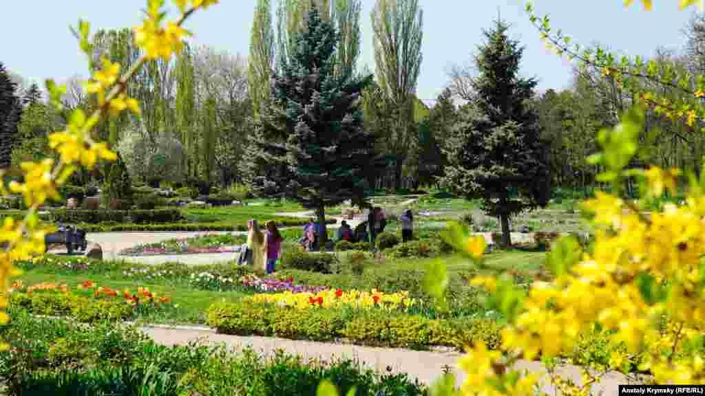 Главная цветочная поляна Симферопольского ботсада
