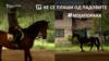 Моја Порака - Дарио и Леонида Гроздановски, прваци во коњички спорт