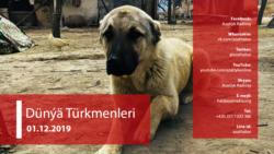 Türkmen alabaýynyň Aşgabatda dikilýän heýkeli we alabaýyň 'milli aňyýeti güýçlendirmekdäki' orny