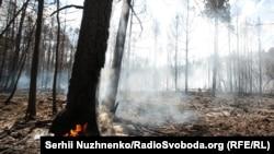 Новий осередок пожеж виник у Житомирській області