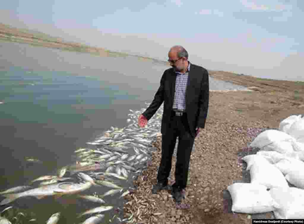 به گفته محسن شوکتی، رییس اداره محیط زیست شهرستان ری، شرکت آب و فاضلاب منطقه حدود ۶۰ درصد احداث تصفيه فاضلاب شهرک واوان را به پيش برد اما پس از آن به دليل آنچه که نداشتن بودجه عنوان کردهاند کار را متوقف کرده و فاضلاب راهی آب سد شده است