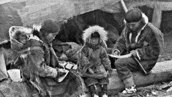 Мечтатели Аляски