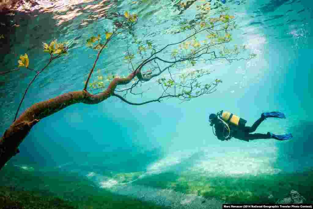 "Third Place: ""Diver in Magic Kingdom"" by Marc Henauer. Grüner See, Tragöss, Austria.  ""Green Lake (Grüner See) is located Tragöss Austria. In spring snowmelt raises the lake level about 10 meters. This phenomenon, which lasts only a few weeks covering the hiking trails, meadows, trees. The result is magical to watch diving landscapes."""