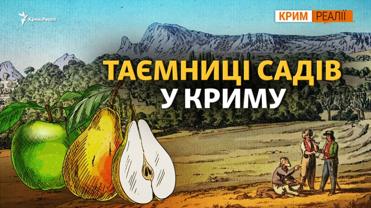 Откуда фрукты в крымском лесу? | Крым.Реалии