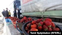 Грузовые автомобили на границе Кыргызстана и Казахстана. 12 октября 2017 года.