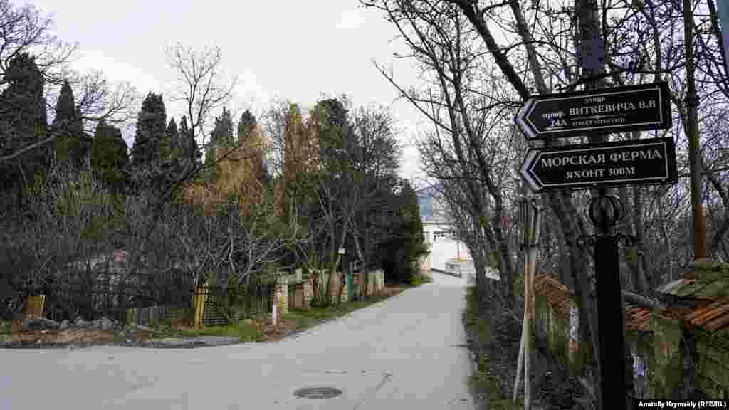 У Кацивелі тільки дві капітально обжиті вулиці. Він носять імена вчених, які колись працювали в селищі