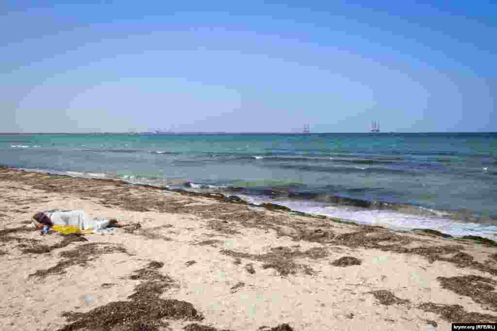 До аннексии техника регулярно с 3-х до 5-ти утра очищала всю береговую полосу пляжа от морской травы и мусора. В этом году чистый кусок пляжа очень небольшой.