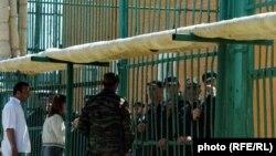 Оьрсийчоь -- Нохчийчоь, тутмакхаш, Чернокозово набахти, 16Сти2007