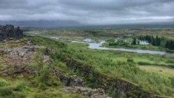 Исланѓани си ги враќаат дрвјата што ги уништиле викинзите