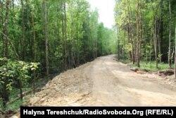 Дорога у лісі, яку зробили