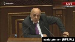 Артур Вагаршян выступает в Национальном собрании, Ереван, 29 мая 2019 г.