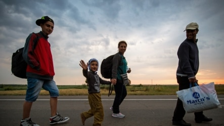 Migrants march toward the Serbian border with Hungary on their way to the EU.