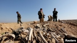 Iraq -- Bones, suspected to belong to members of Iraq's Yazidi community, are seen in a mass grave on the outskirts of the town of Sinjar, November 30, 2015
