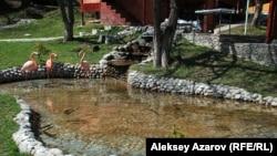 "Пруд на территории кафе. Алматы, зона отдыха ""Ак-Орда"". 5 апреля 2013 года."