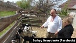 Ветеран АТО, засновник екоферми «Козацьке подвір'я» Сергій Свириденко. 2016 рік