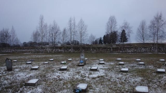 Марцыбіліна - люты 28, 2019