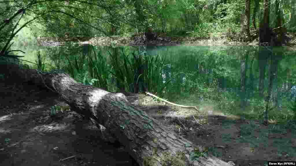Тихие заводи Черной речки.Раньше носила крымскотатарское название Чоргунь. В 1667 году турокЭвлия Челебиупоминал ее в своей «Книге путешествий» как Казыклы-Озен