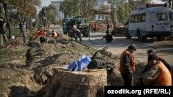 Чинары, которые росли в одной из центральных аллей сквера Амира Темура были вырублены в 2009 году.