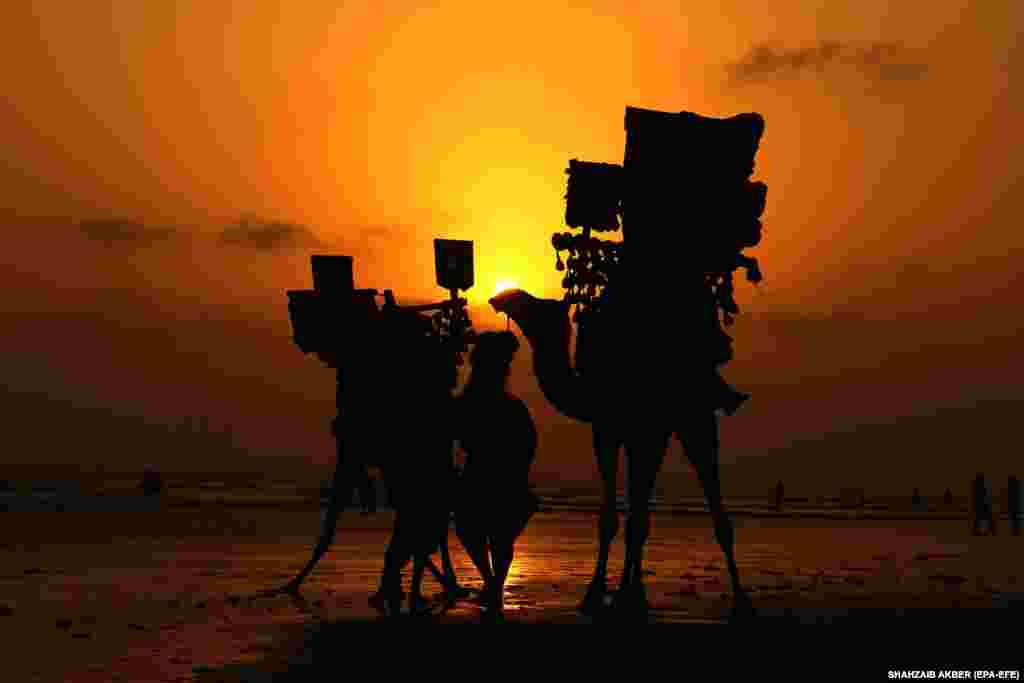 Чалавек зь вярблюдамі прагульваецца па пляжы ў Карачы, Пакістан.