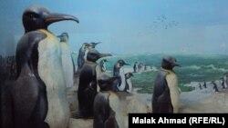 متحف التاريخ الطبيعي العراقي
