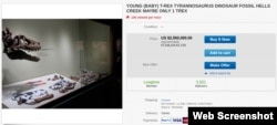 Объявление на eBay о продаже тиранозавра