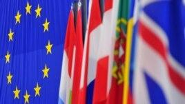 Zastava EU i zemalja članica