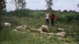 """Герои фильма """"Князь мира"""" обнаружили скелет гиганта"""