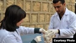 طبيبان يفحصان دجاجة في حقل للدواجن بدهوك