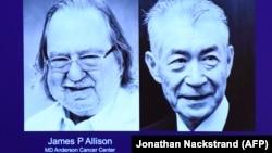 Победители Нобелевской премии по медицине 2018 года — Джеймс Аллисон (слева) и Тасуко Хондзё.