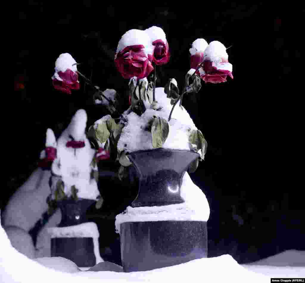 Frozen roses alongside a gravestone.