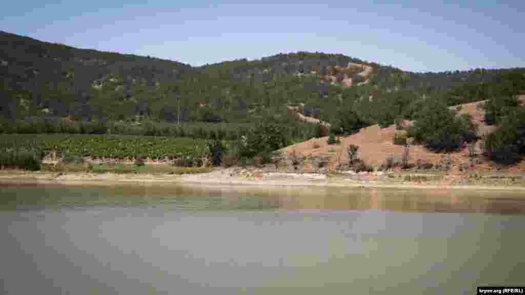 Озеро, которые местные называют «Брынзой», из-за отсутствия осадков в последние полгода сильнообмелело, что разочаровывает местных рыбаков. Ведь раньшетут ловились и сазаны, и толстолобики