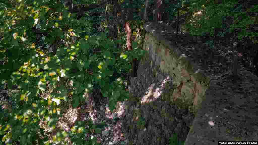 Частина підпірної стіни обвалилася, на її місці вже ростуть дерева
