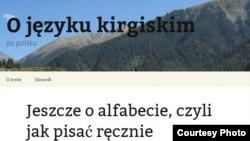 Скриншот со страницы блога.
