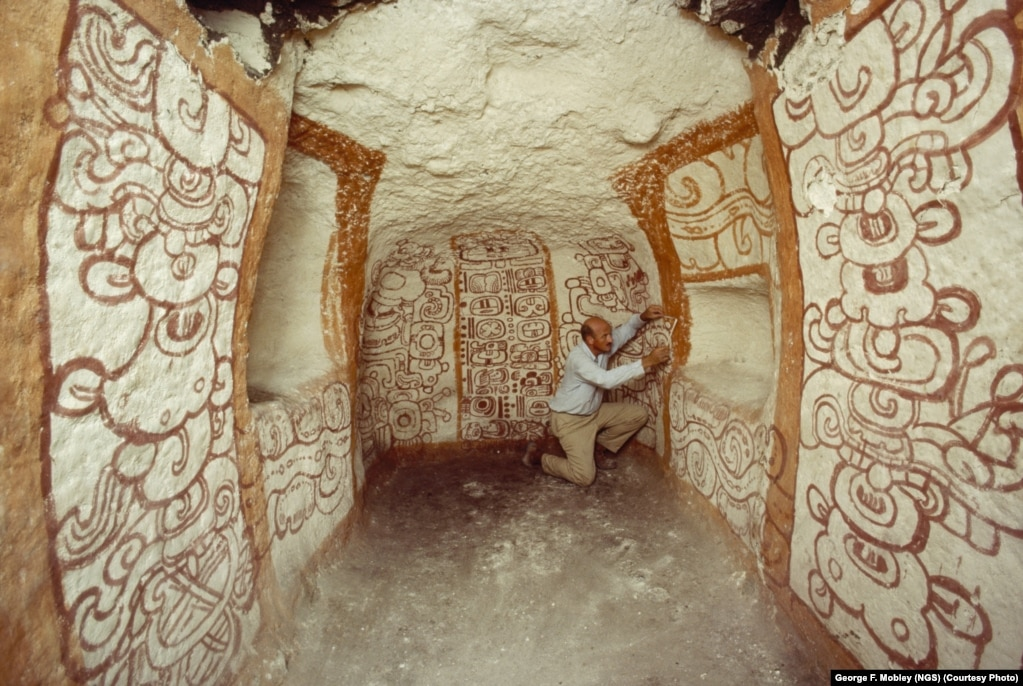Archaeologist And National Geographic Grantee Richard Adams Examines  Pre Columbian Mayan Wall Murals In Tomb Part 67
