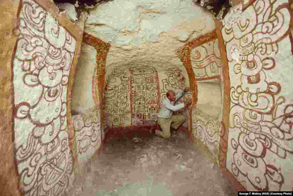 Archaeologist and National Geographic grantee Richard Adams examines pre-Columbian Mayan wall murals in Tomb One at Guatemala's Rio Azul in 1984.