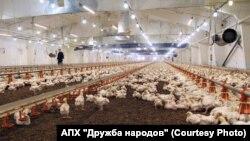 """Производственные мощности комбината """"Дружба народов"""""""