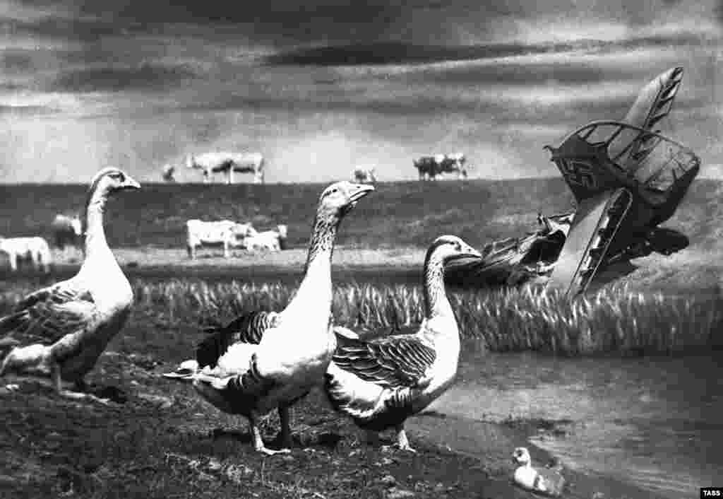 "Hours of delicate work would have been required for this montage of geese and a downed Nazi warplane ""sinking in a river."""