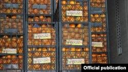 Veleposlanik Rusije u Hrvatskoj Anvar Azimov: Hrvatske mandarine, kruške, riba dolaze na rusko tržište, ali kroz treće zemlje.