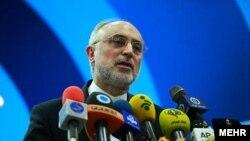 The head of Iran's Atomic Energy Organization, Ali Akbar Salehi, made the announcement on December 19 (file photo)