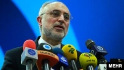 Iran -- Iran's head of the country's Atomic Energy Organization, Ali Akbar Salehi Speaking in a ceremony on Wednesday April 9, 2014.