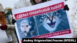 Пикет зоозащитников
