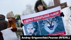Протест зоозащитников (архивное фото)