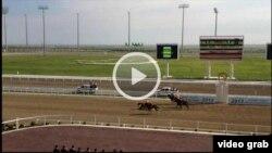 Момент падения президента Туркменистана Гурбангулы Бердымухамедова с лошади. Скриншот с видеозаписи. 28 апреля 2013 года.