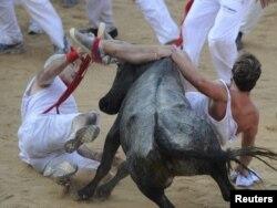 И быки, и люди, по мнению защитников животных, получают слишком много стресса на этом празднике